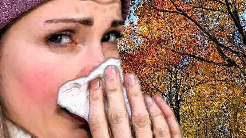 Как вылечить насморк в домашних условиях быстро, как быстро вылечить насморк в домашних условиях
